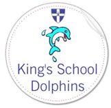 King's School dolphin badge